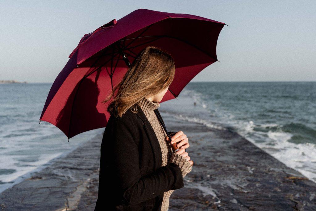 parapluie de cherbourg femme